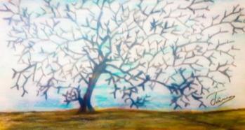 20150524_164247_branching-tree